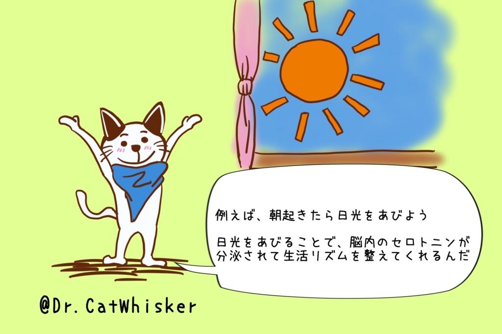 f:id:cat-whisker:20170804231125j:plain