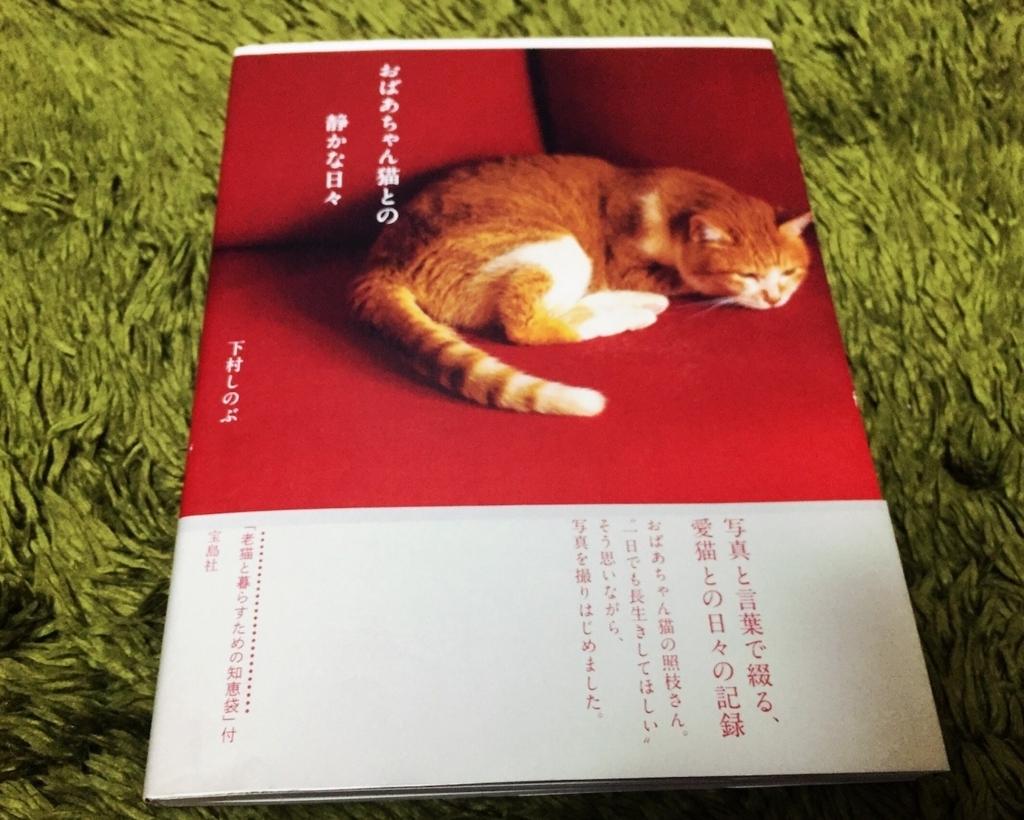 ネコ好き必読→「おばあちゃん猫との静かな日々」by下村しのぶ