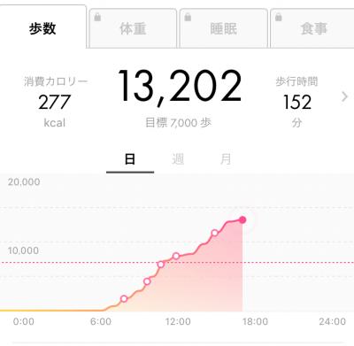 この日は13,000歩以上歩いてました!