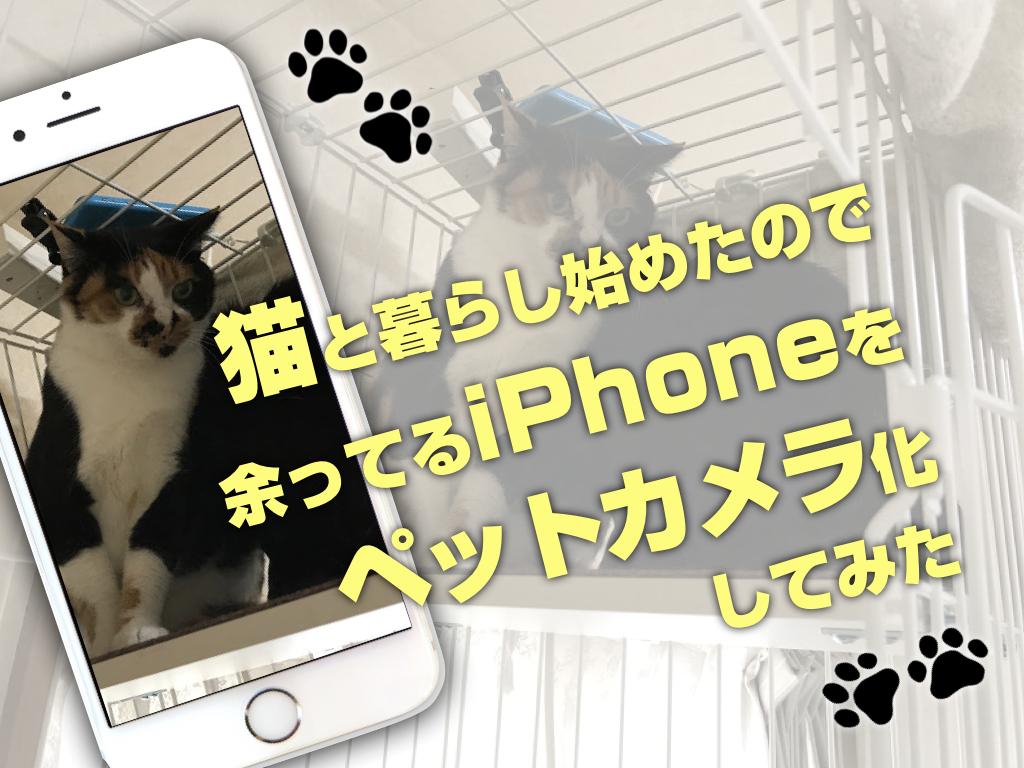 f:id:cat_akira:20170716184412p:plain