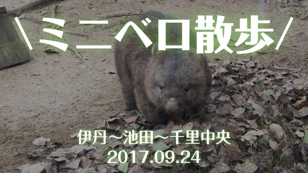 f:id:cat_akira:20170925193708j:plain