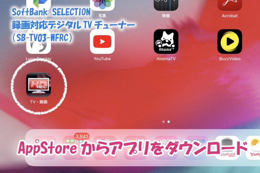 f:id:cat_akira:20190211233337j:plain