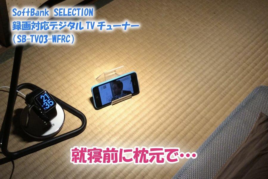 f:id:cat_akira:20190211233517j:plain