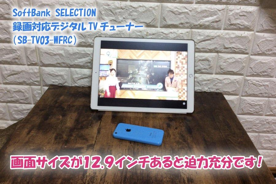 f:id:cat_akira:20190211233606j:plain