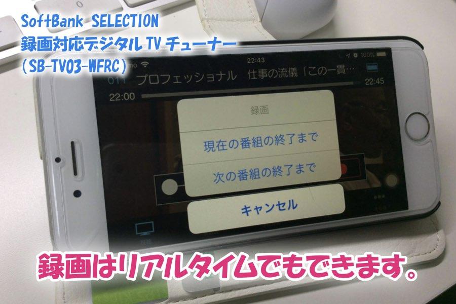 f:id:cat_akira:20190211233658j:plain