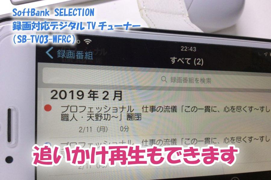 f:id:cat_akira:20190211233821j:plain