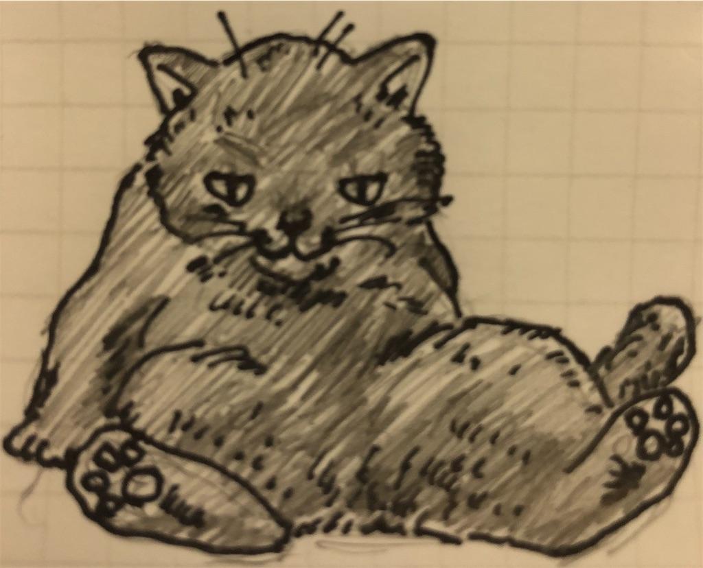 f:id:catfishkun:20200126212326j:image