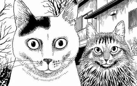 f:id:catpower:20200921121803j:plain