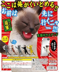 f:id:catrabbitnekousagi:20160713210221j:plain