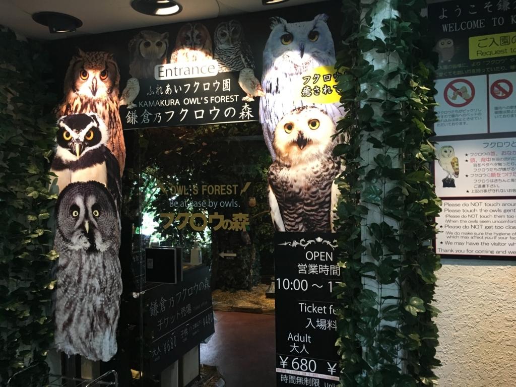 f:id:catrabbitnekousagi:20170806104736j:plain
