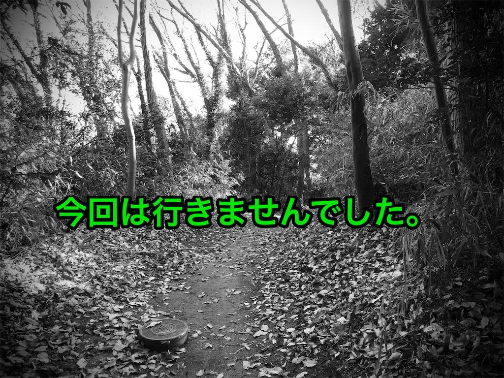 f:id:cb125250zzr250:20210117165051j:image