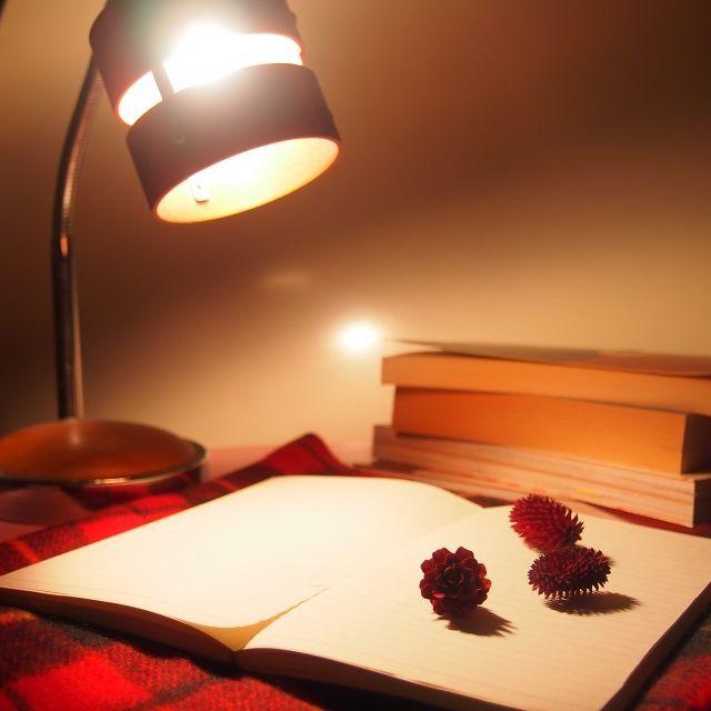 夜寝る前に読書をする様子