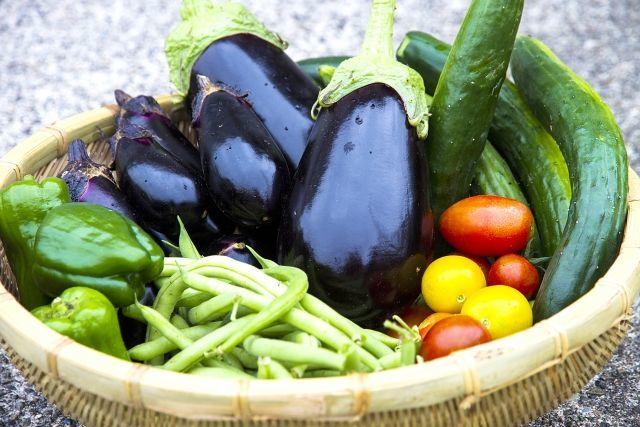 様々な野菜の写真