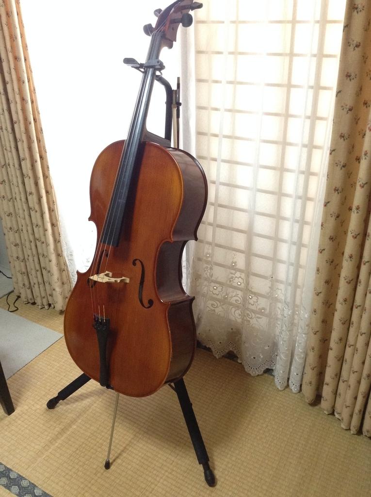 f:id:cellolife:20181022151058j:plain