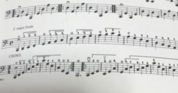 f:id:cellolife:20190723185642j:plain