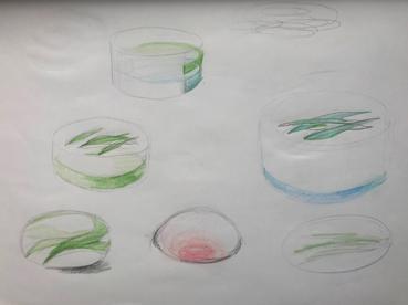 f:id:ceramicsstar:20200609013027j:plain