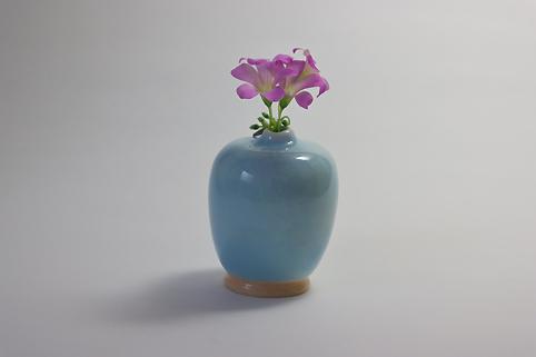 f:id:ceramicsstar:20201108001427j:plain