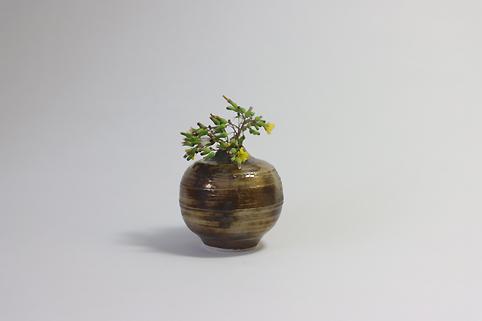 f:id:ceramicsstar:20201108001715j:plain
