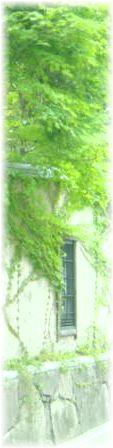 f:id:cerefica:20060815143833j:image