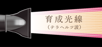 "<img src=""drink.jpg"" alt=""ホリステックキュアドライヤー育成光線"">"