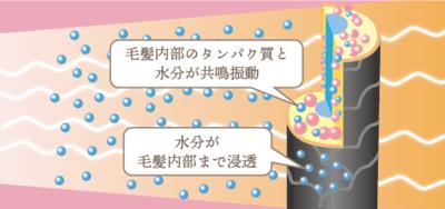 "<img src=""drink.jpg"" alt=""ホリステックキュアドライヤー育成光線水分を微細化"">"