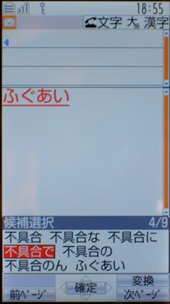 f:id:ceva:20080114200828j:image