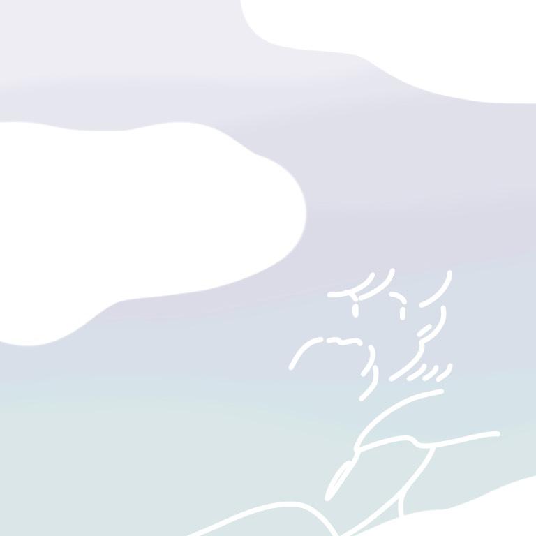 f:id:cff_japan:20200516162541j:plain