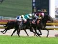 [競馬]2009-05-02 テレビ東京杯青葉賞 アプレザンレーヴ