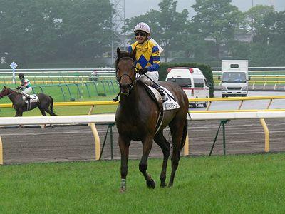 個別「[競馬]2009-05-31 日本ダービー ロジユニヴァース ...