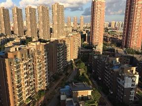 f:id:chachan-china:20190113222740j:plain