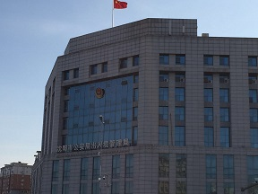 f:id:chachan-china:20190115163922j:plain