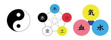 f:id:chachan-china:20190305164728j:plain