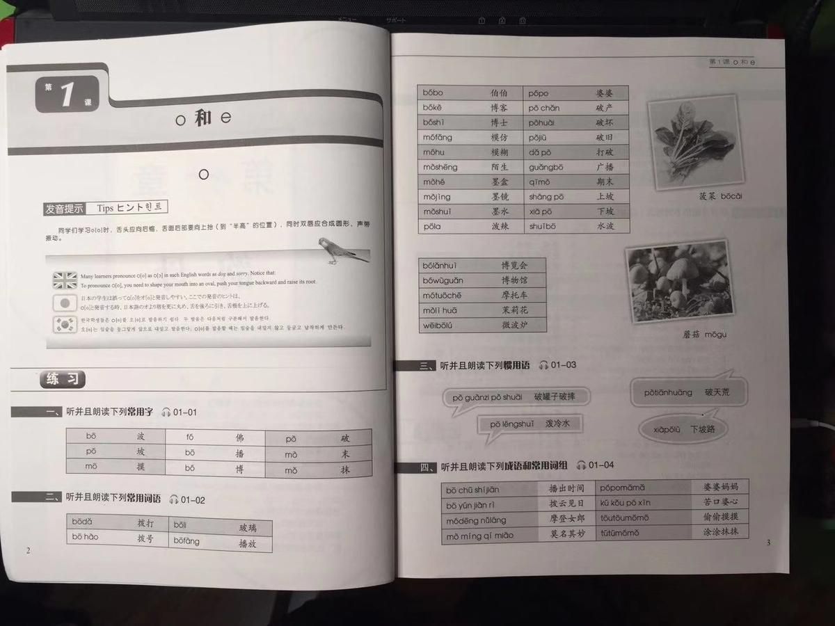 f:id:chachan-china:20190913181743j:plain