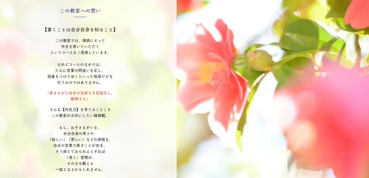 f:id:chachan-china:20200403150617p:plain