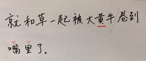 f:id:chachan-china:20200428093319j:plain