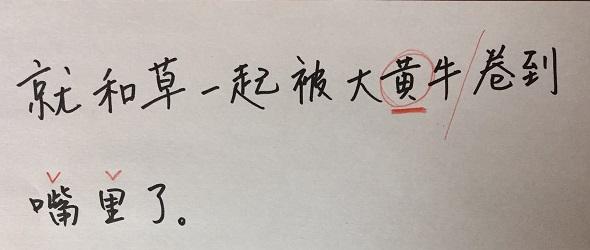 f:id:chachan-china:20200428094920j:plain