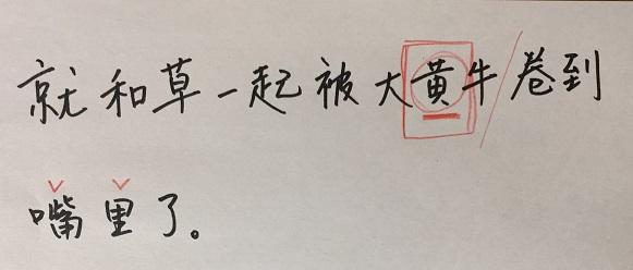 f:id:chachan-china:20200428095328j:plain