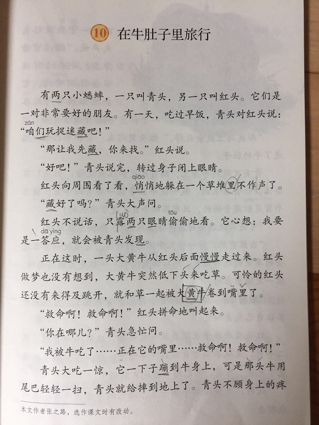 f:id:chachan-china:20200428101047j:plain