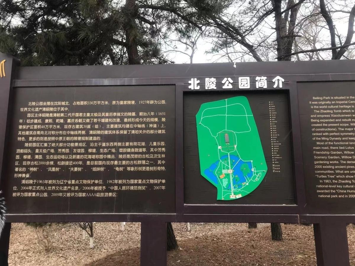 f:id:chachan-china:20210216013250j:plain