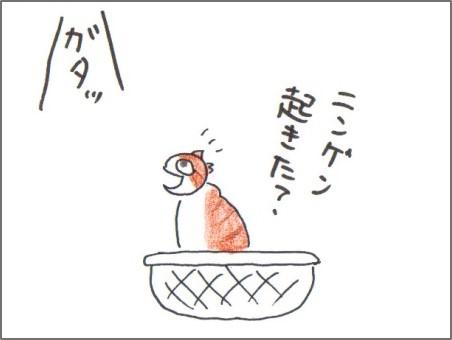 f:id:chai-ko:20160717201952j:plain
