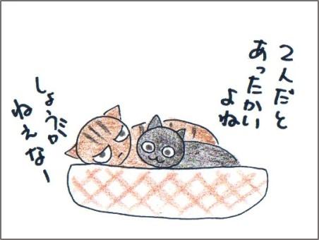 f:id:chai-ko:20161011185107j:plain