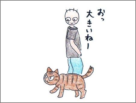 f:id:chai-ko:20161016125903j:plain