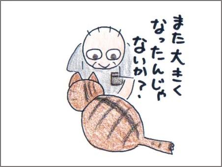 f:id:chai-ko:20161016125906j:plain