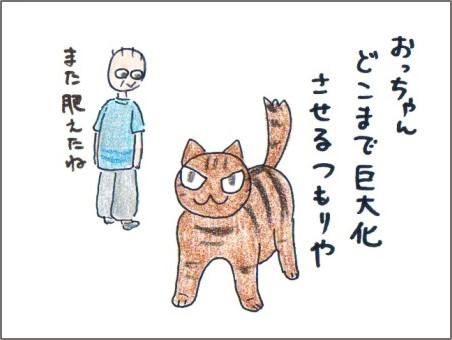 f:id:chai-ko:20161016125910j:plain