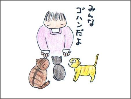 f:id:chai-ko:20161016194113j:plain