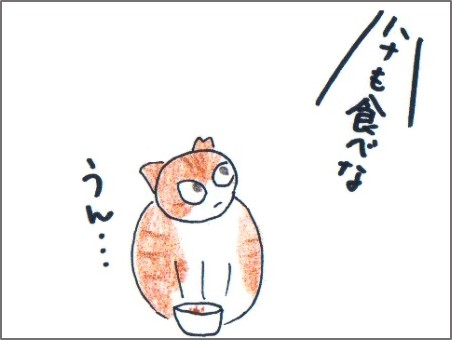 f:id:chai-ko:20161016194114j:plain
