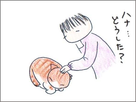 f:id:chai-ko:20161023160823j:plain