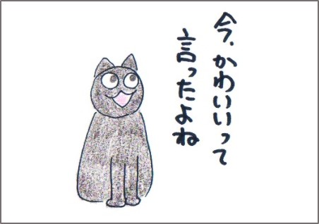 f:id:chai-ko:20161030001317j:plain