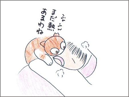 f:id:chai-ko:20161101171908j:plain