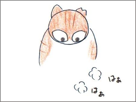 f:id:chai-ko:20161101171911j:plain